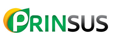 Prinsus Energy Management