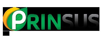 Prinsus Energy Management
